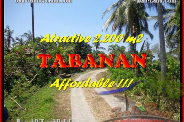 Magnificent 2.200 m2 LAND IN TABANAN BALI FOR SALE TJTB169