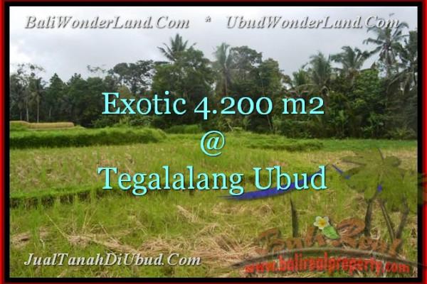 Beautiful PROPERTY LAND IN UBUD FOR SALE TJUB461