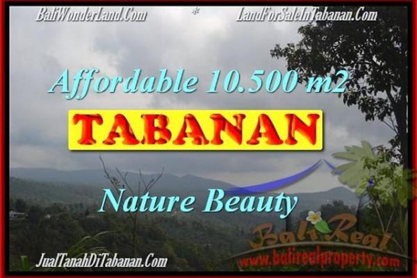 Beautiful PROPERTY Sukasada 10,500 m2 LAND FOR SALE TJTB165