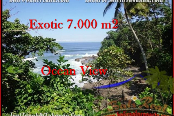 FOR SALE Magnificent LAND IN Tabanan Selemadeg BALI TJTB200