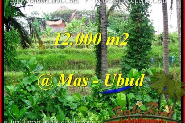 FOR SALE 12,000 m2 LAND IN UBUD TJUB492