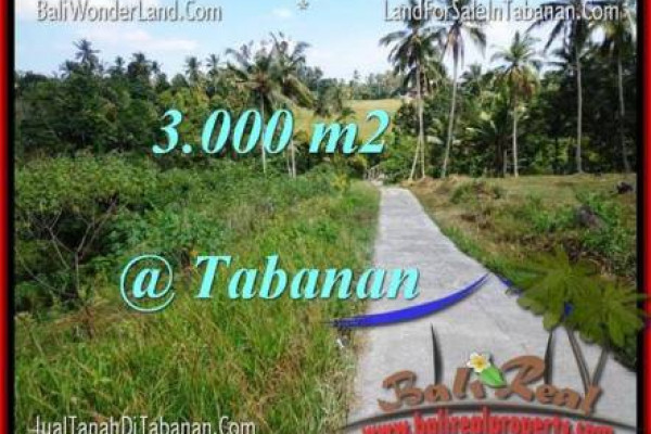 FOR SALE Magnificent LAND IN Tabanan Selemadeg BALI TJTB205