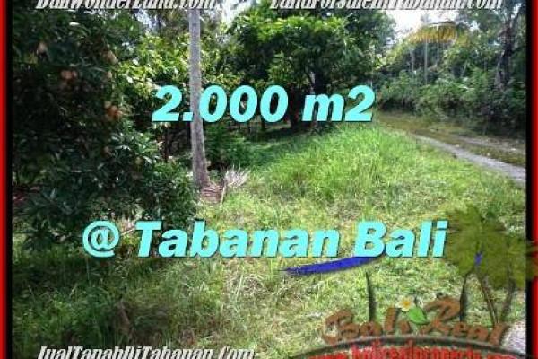 Beautiful PROPERTY LAND IN TABANAN FOR SALE TJTB206