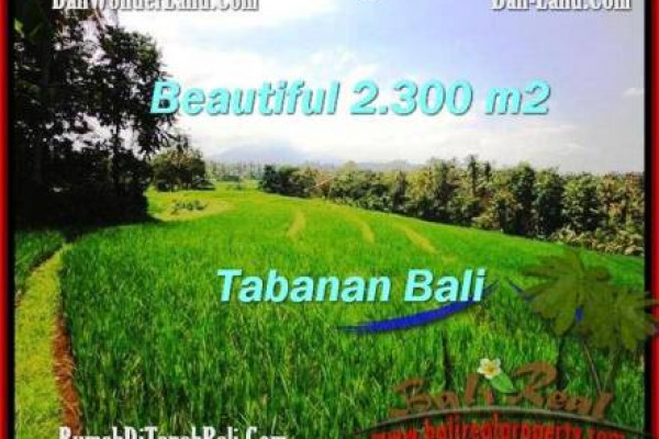 Beautiful PROPERTY LAND SALE IN TABANAN TJTB209