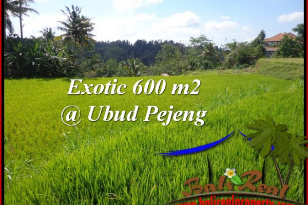 Magnificent PROPERTY LAND SALE IN UBUD TJUB513