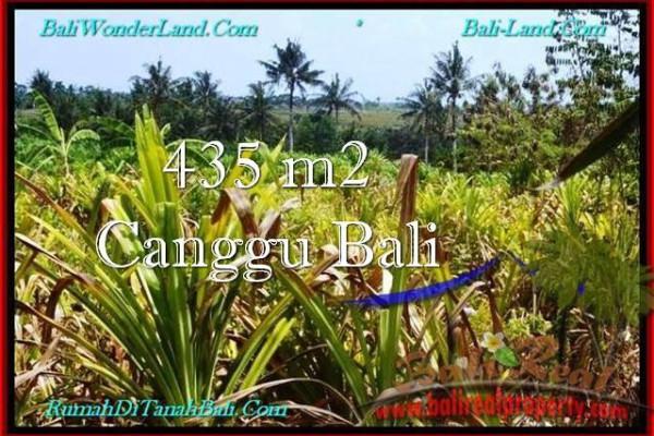 Beautiful PROPERTY Canggu Pererenan BALI LAND FOR SALE TJCG196