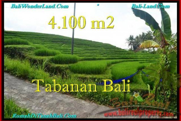 Magnificent PROPERTY LAND IN TABANAN FOR SALE TJTB239