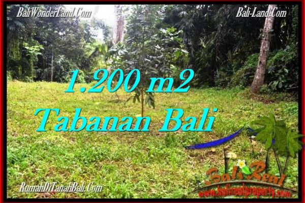 Affordable Tabanan Penebel BALI LAND FOR SALE TJTB278