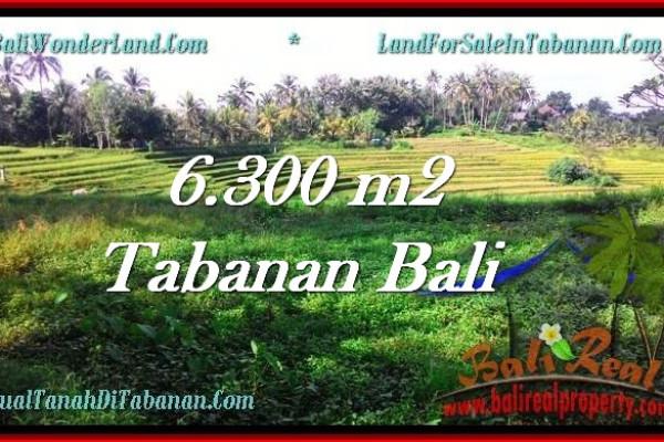 Affordable Tabanan Selemadeg BALI LAND FOR SALE TJTB275