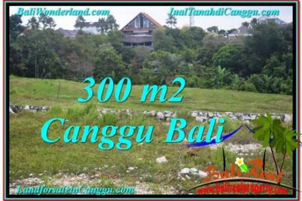 Exotic PROPERTY 300 m2 LAND FOR SALE IN CANGGU BALI TJCG205