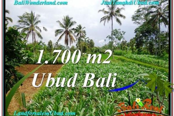 Beautiful PROPERTY Ubud Payangan 1,700 m2 LAND FOR SALE TJUB560