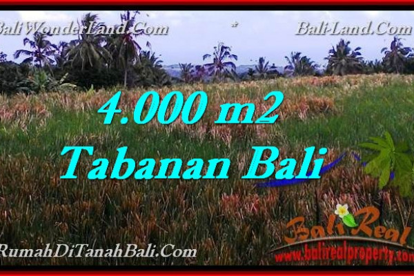 FOR SALE Exotic PROPERTY 4,000 m2 LAND IN TABANAN BALI TJTB288