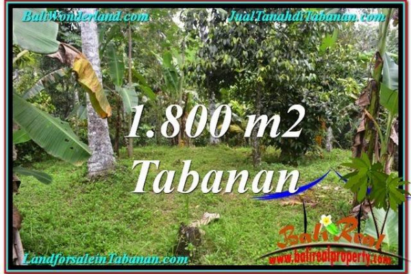 Exotic LAND SALE IN Tabanan Penebel BALI TJTB293