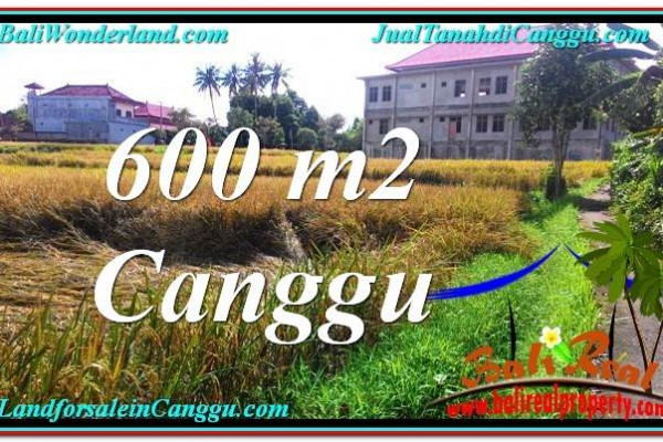 FOR SALE 600 m2 LAND IN Canggu Pererenan BALI TJCG211