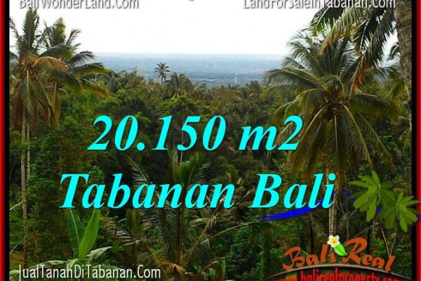 Affordable 20,150 m2 LAND SALE IN Tabanan Penebel BALI TJTB322