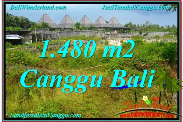 Magnificent 1,480 m2 LAND FOR SALE IN CANGGU TJCG212
