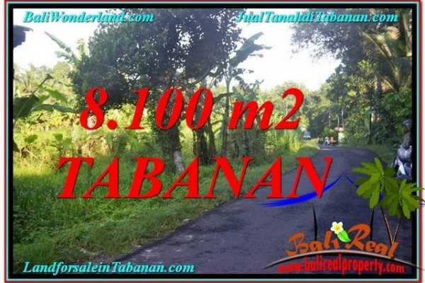 Exotic 8,100 m2 LAND IN TABANAN FOR SALE TJTB329