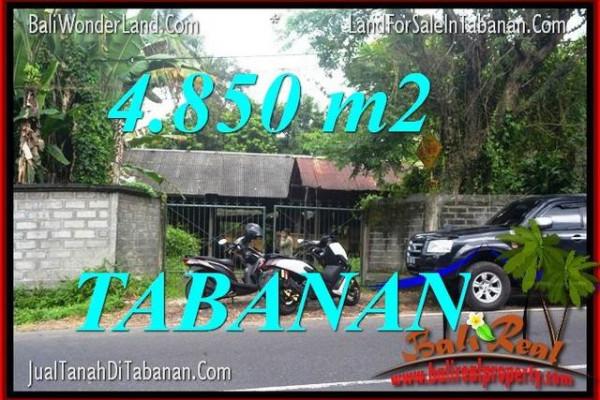 FOR SALE Affordable PROPERTY 4,850 m2 LAND IN Tabanan Bedugul TJTB330