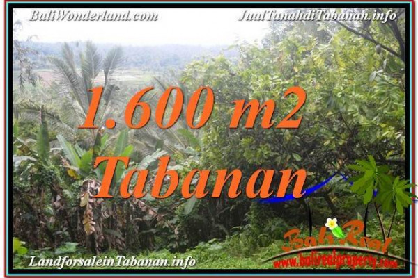 Magnificent 1,600 m2 LAND FOR SALE IN Tabanan Selemadeg TJTB348