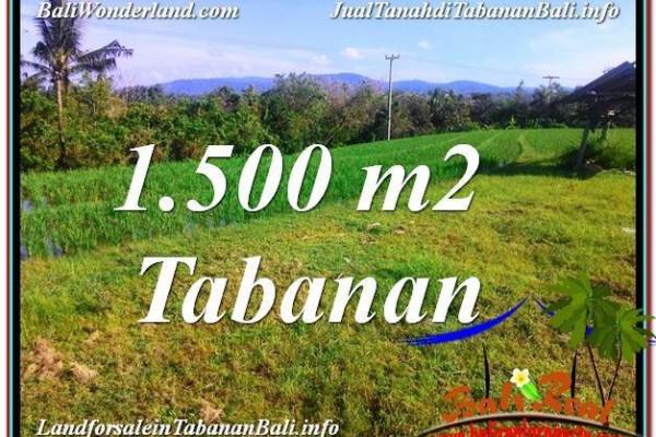 Exotic LAND FOR SALE IN TABANAN TJTB353