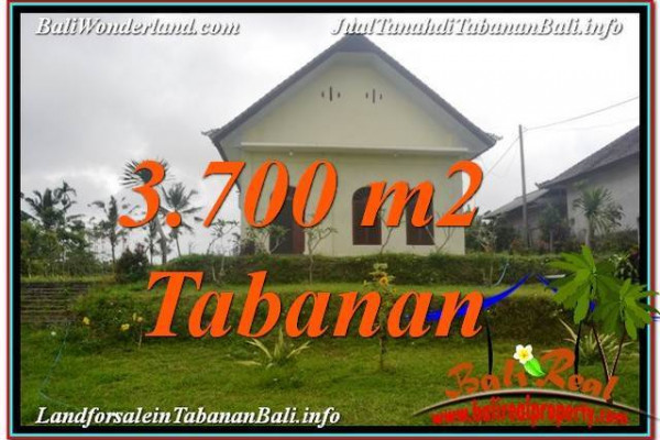 Exotic 3,700 m2 LAND IN TABANAN BALI FOR SALE TJTB336