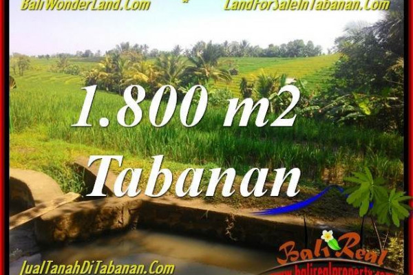 FOR SALE Exotic 1,800 m2 LAND IN TABANAN BALI TJTB338