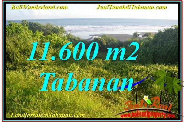 Affordable PROPERTY LAND FOR SALE IN TABANAN BALI TJTB340