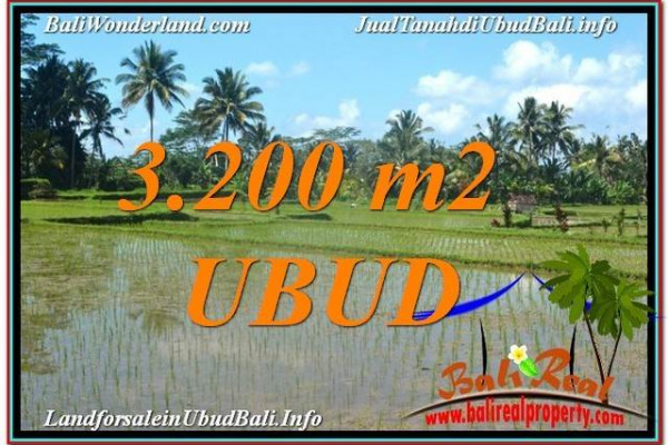 Magnificent PROPERTY 3,200 m2 LAND FOR SALE IN Ubud Payangan TJUB628