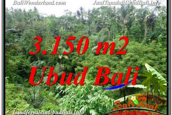 FOR SALE Magnificent PROPERTY 3,150 m2 LAND IN UBUD BALI TJUB608