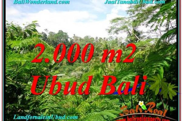 Exotic 2,000 m2 LAND SALE IN UBUD BALI TJUB611