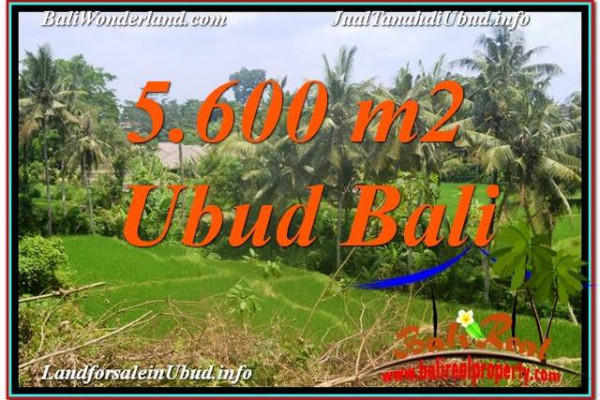 FOR SALE Magnificent PROPERTY 5,600 m2 LAND IN UBUD BALI TJUB636