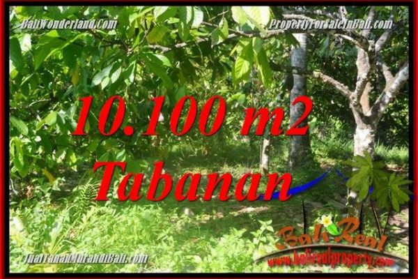 Beautiful PROPERTY LAND SALE IN TABANAN BALI TJTB360