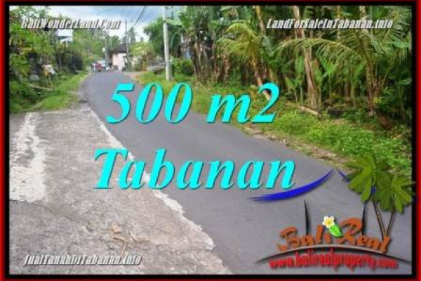 Affordable Bali PROPERTY Tabanan LAND FOR SALE TJTB362