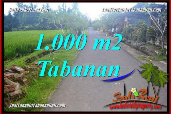 Affordable PROPERTY LAND SALE IN TABANAN TJTB363