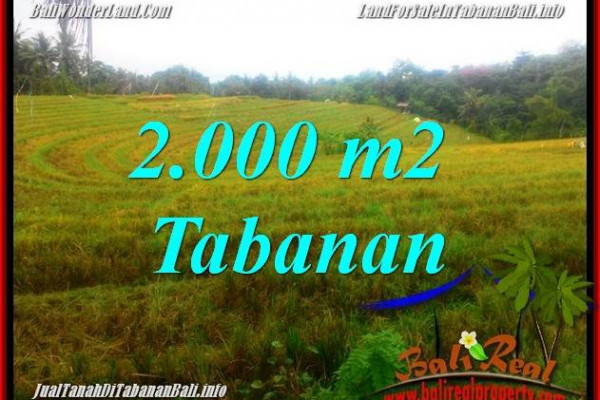 Exotic PROPERTY 2,000 m2 LAND FOR SALE IN Tabanan Selemadeg TJTB356