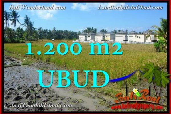 Magnificent PROPERTY LAND SALE IN UBUD TJUB663