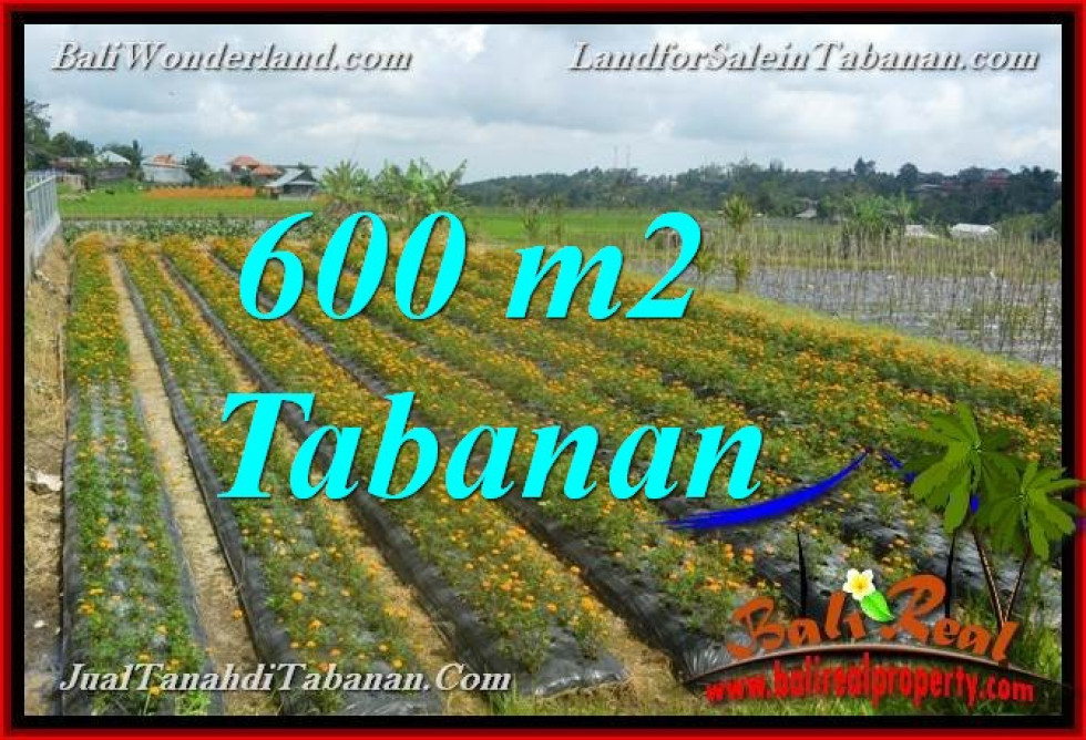 FOR SALE Affordable PROPERTY 600 m2 LAND IN TABANAN BALI TJTB372
