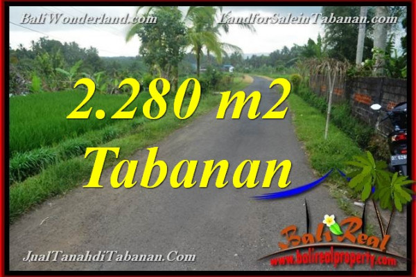 Beautiful 2,280 m2 LAND IN TABANAN FOR SALE TJTB374