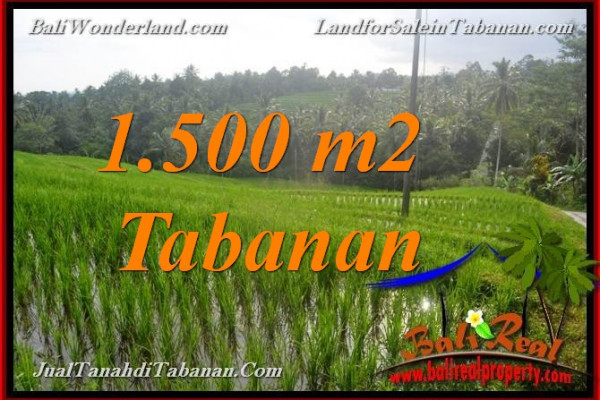 Magnificent PROPERTY TABANAN BALI LAND FOR SALE TJTB375
