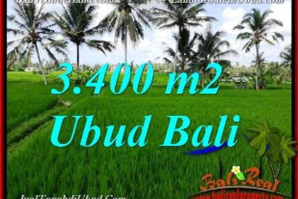 FOR SALE Exotic PROPERTY 3,400 m2 LAND IN UBUD BALI TJUB656