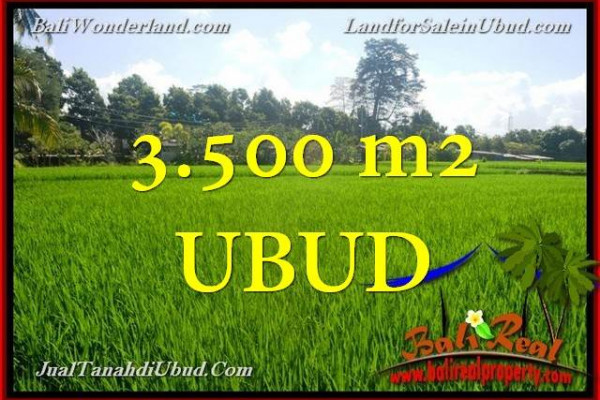 FOR SALE Exotic PROPERTY LAND IN Ubud Gianyar BALI TJUB660