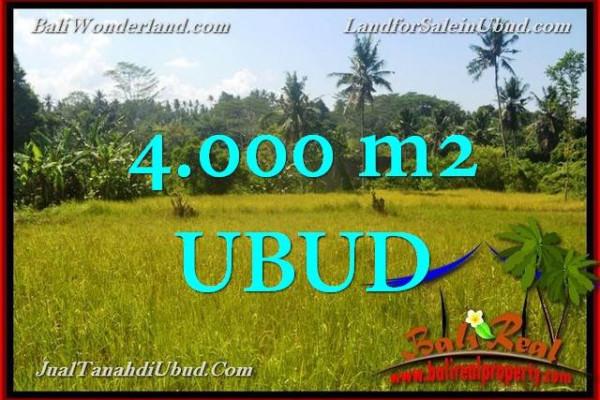 Beautiful PROPERTY Ubud Gianyar 4,000 m2 LAND FOR SALE TJUB661