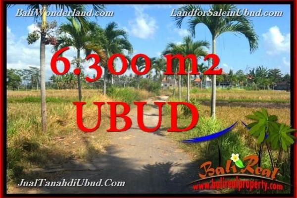 FOR SALE Beautiful PROPERTY 6,300 m2 LAND IN UBUD BALI TJUB662