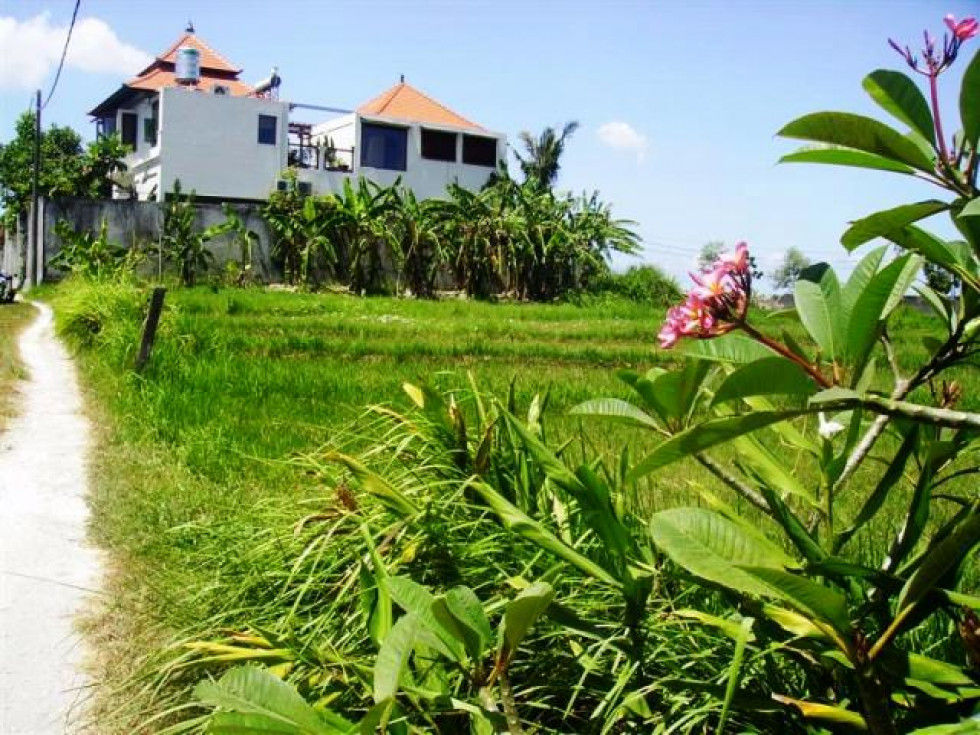 Land for sale in Canggu 15 are ( 1500 m2 ) in Brawa – TJCG045
