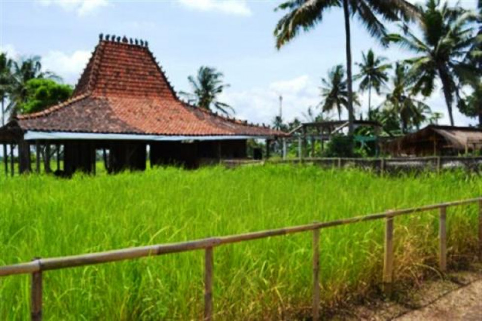 land for sale in Ubud with stunning mountain view – TJUB031