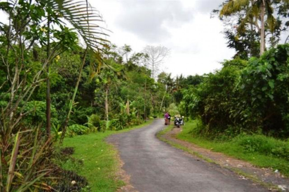 land for sale in Ubud next to the Caddy Hotel – TJUB009