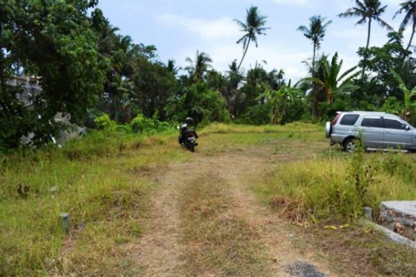 Land for sale in Gianyar river view in Blahbatuh – TJGN001