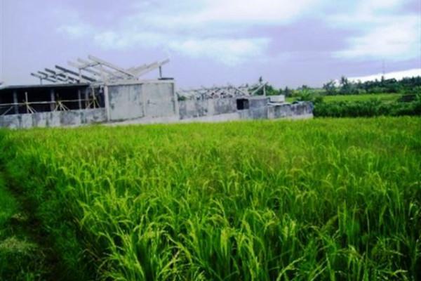 nice land for sale in canggu – TJCG016