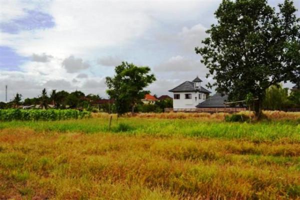 Land for sale in Canggu Kayu Tulang – TJCG022