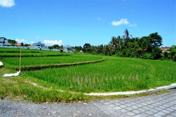 land for sale in canggu suitable for villa – TJCG028